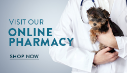 Visit Our Online Pharmacy